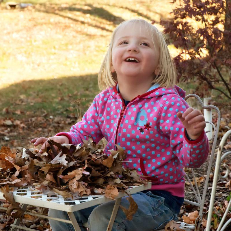 Leaves111410_052